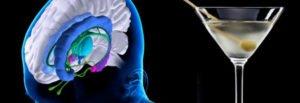 Efectos del alcohol sobre el cerebro