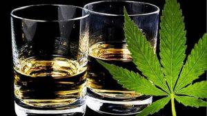 Alcohol y marihuana, peligrosa combinación
