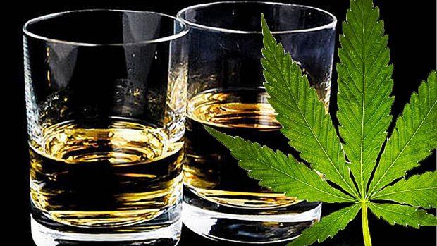 Alcohol i marihuna, perillosa combinació