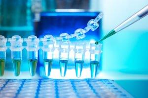 La investigació, clau per combatre l'addicció