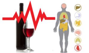 Aquests són els efectes de l'alcohol al cos humà