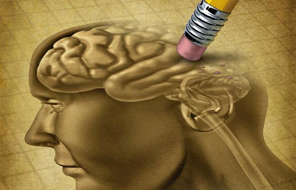 Por qué perdemos la memoria durante una borrachera